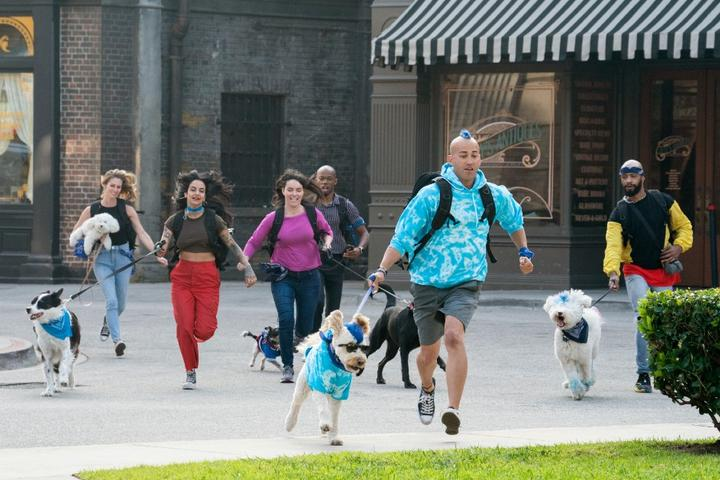 "Follow ""The Pack"" to 9 Pet-friendly Destinations Around the World"
