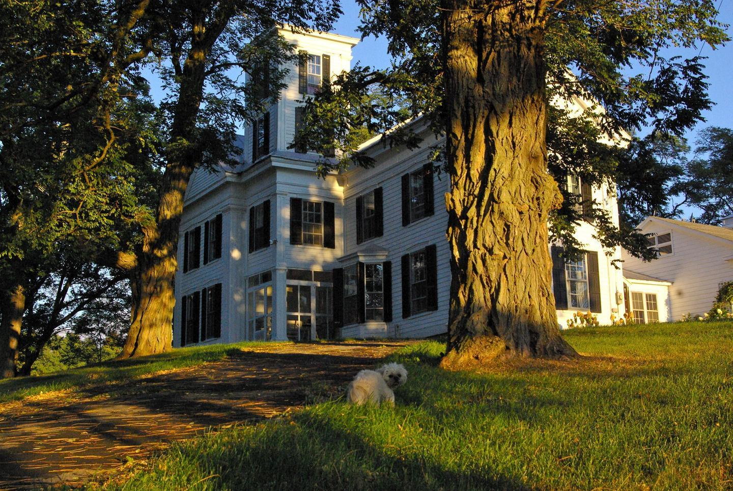 Historic Catskill Mountain House Pet Policy