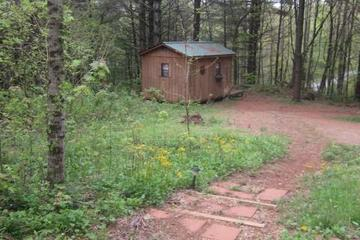Pet Friendly Tiny Cabin on Forest Farm