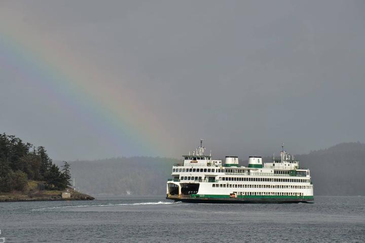 Pet Friendly Washington State Ferry