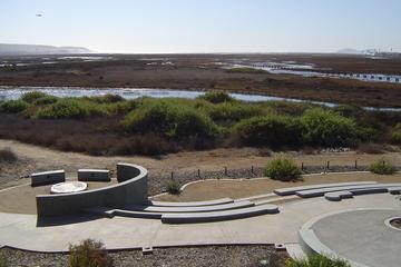 Pet Friendly Tijuana Estuary