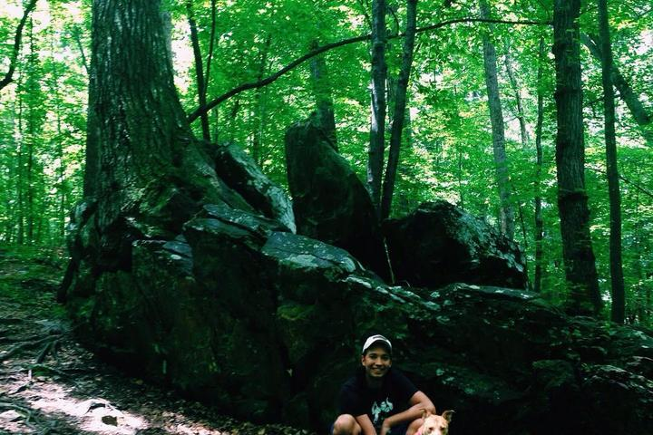 Pet Friendly Sal's Branch Trail - William B. Umstead State Park