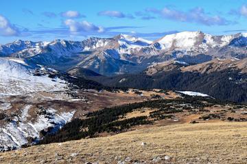 Pet Friendly Rocky Mountain National Park