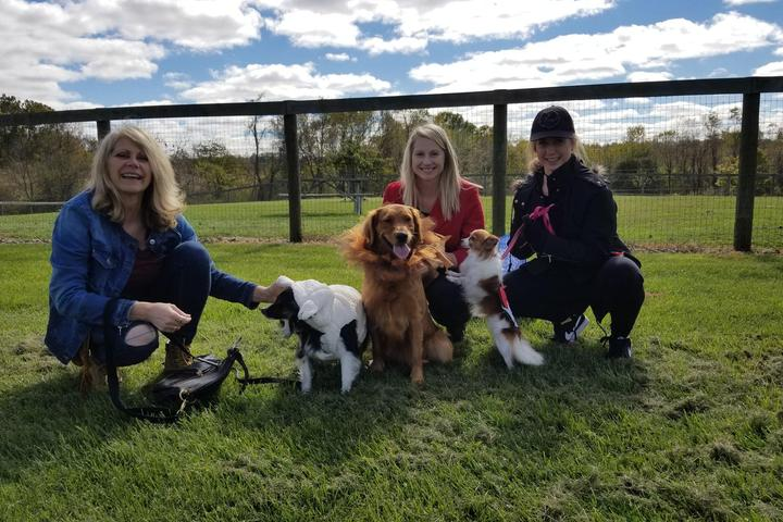 Pet Friendly Infirmary Mound Park