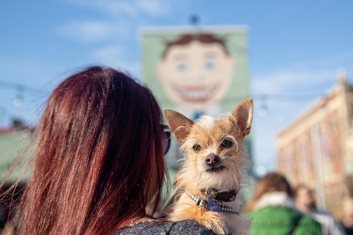 Pet Friendly Asbury Park Boardwalk