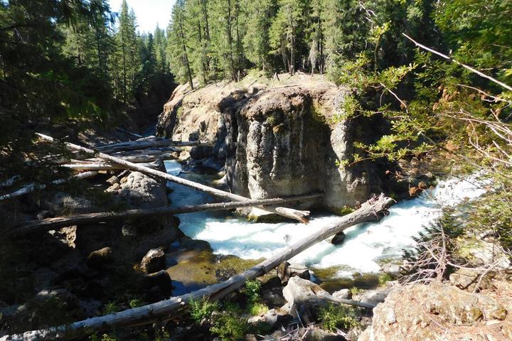 Pet Friendly Upper Rogue River Trail: Knob Falls Segment (miles 10-14)
