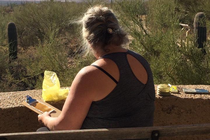 Pet Friendly Paint a Postcard in the Desert