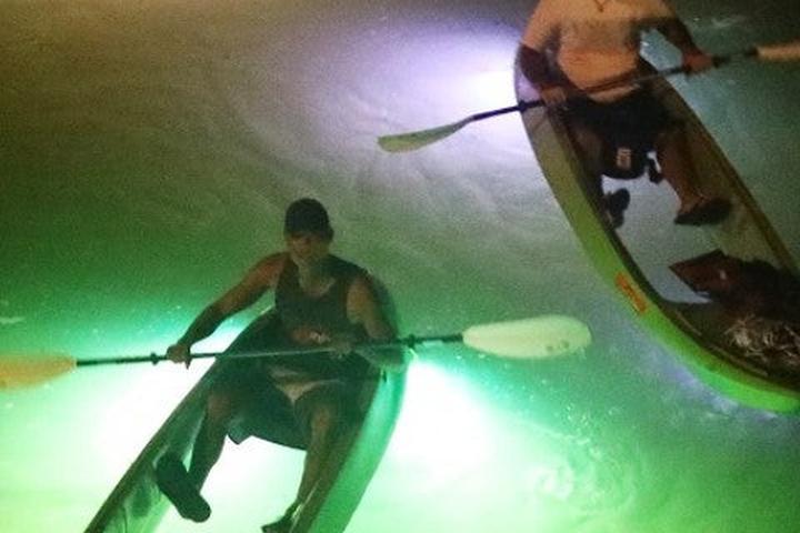 Pet Friendly Glass Bottom Kayak Led Illuminated Tours