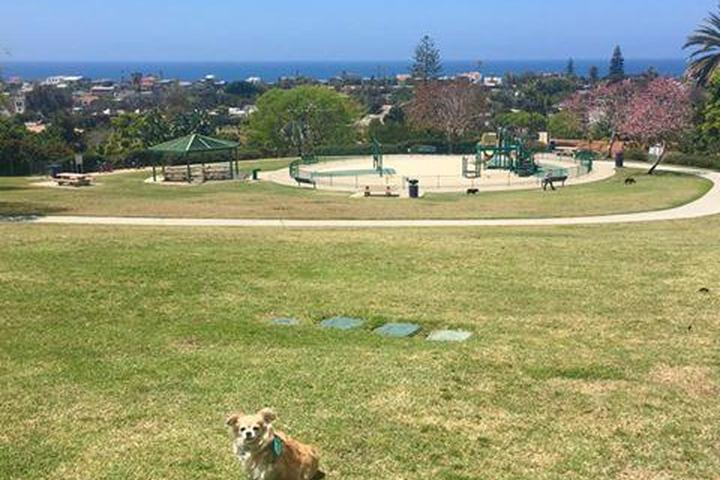 Pet Friendly Orpheus Dog Park