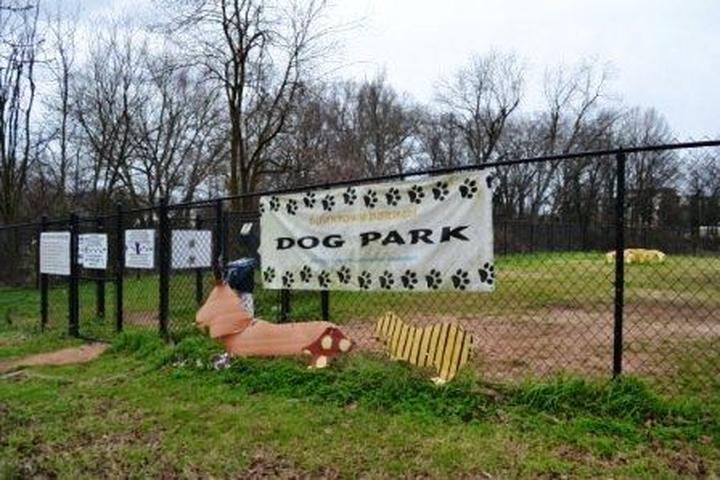 Pet Friendly Durham Dog Park