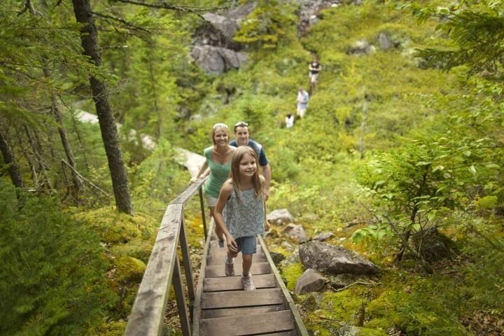 Pet Friendly Fundy National Park