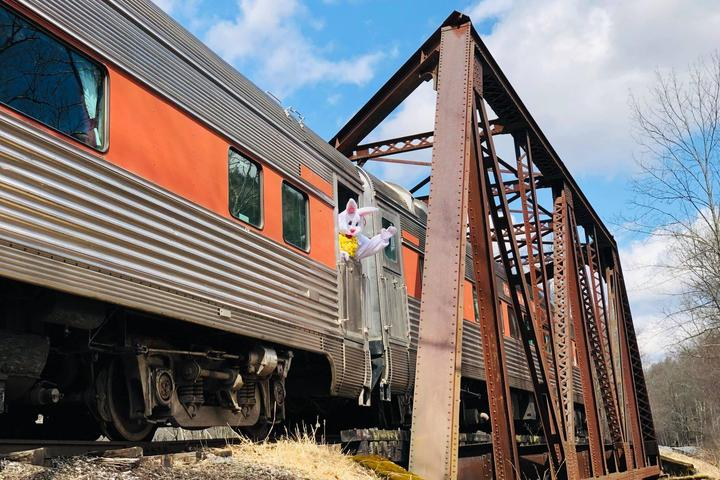 Pet Friendly Delaware and Ulster Railroad