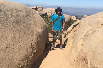 Pet Friendly Iron Mountain Trail