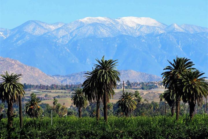 Pet Friendly California Citrus State Historic Park