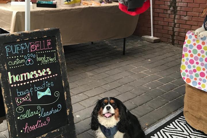 Pet Friendly The Augusta Market