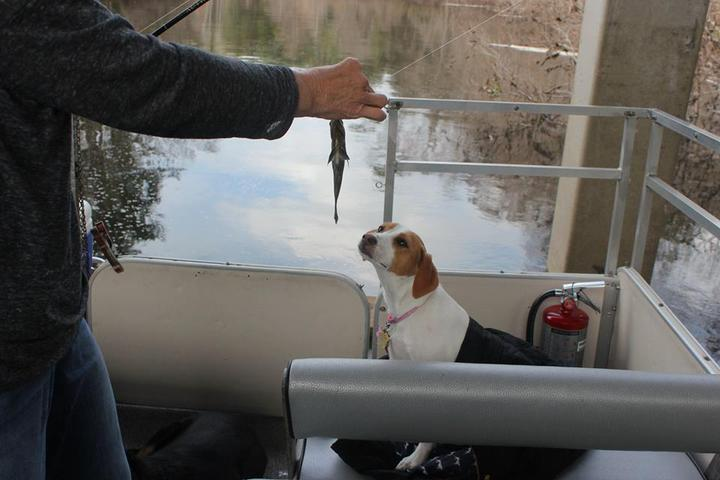 Pet Friendly Captain Tom's Custom Charters