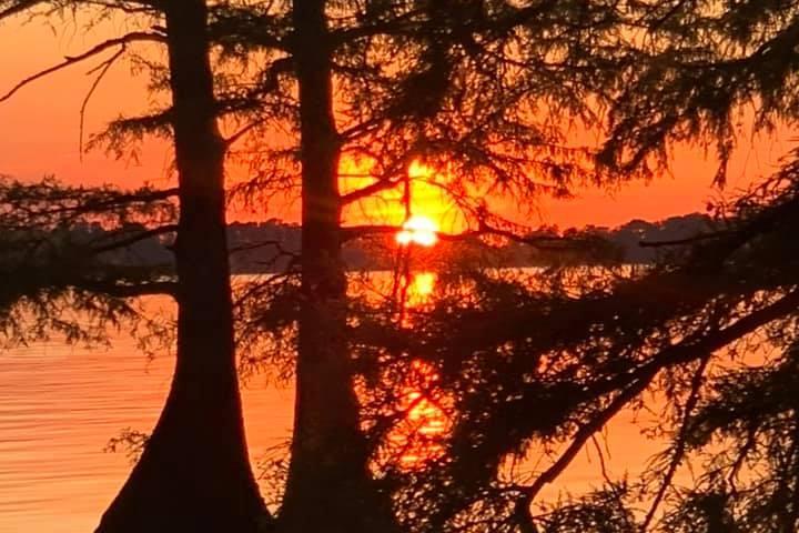 Pet Friendly Reelfoot Lake State Park