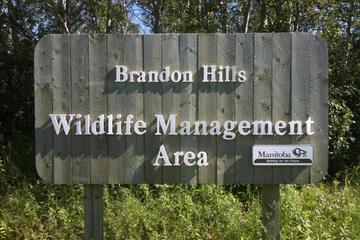 Pet Friendly Brandon Hills Wildlife Conservation Area