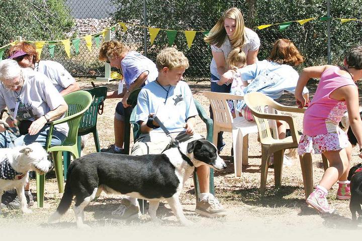 Pet Friendly Rumsey Park