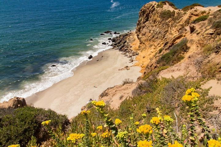 Pet Friendly LA/Malibu's Wild Beauty-EcoCultural Hike