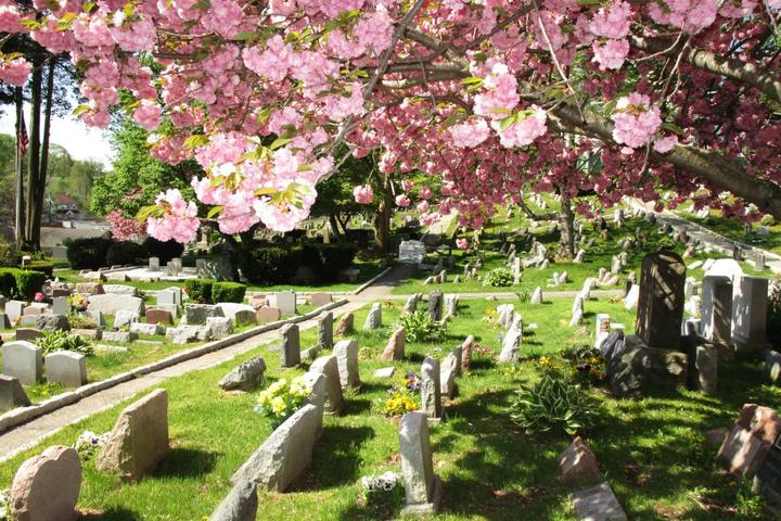 Pet Friendly Hartsdale Pet Cemetery