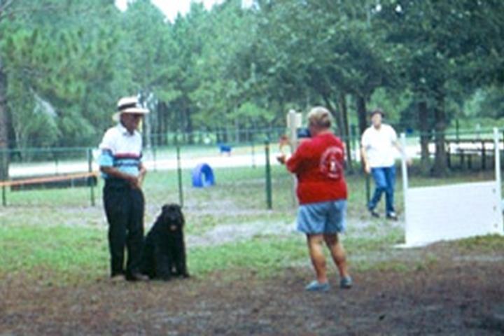 Pet Friendly Lake Idamere Dog Park