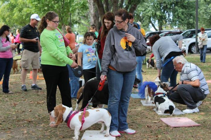 Pet Friendly Riverview Park