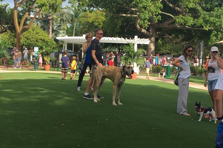Pet Friendly Key Biscayne Dog Park