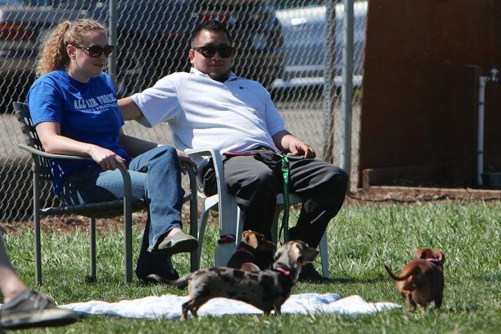 Pet Friendly Potso Dog Park