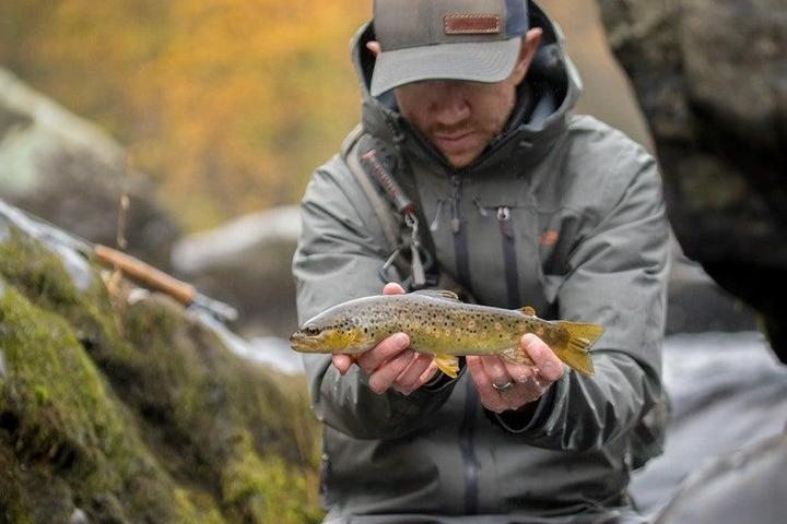 Pet Friendly Fly Fishing for trout in a Pocono stream