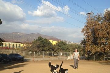 Pet Friendly Griffith Park Dog Park