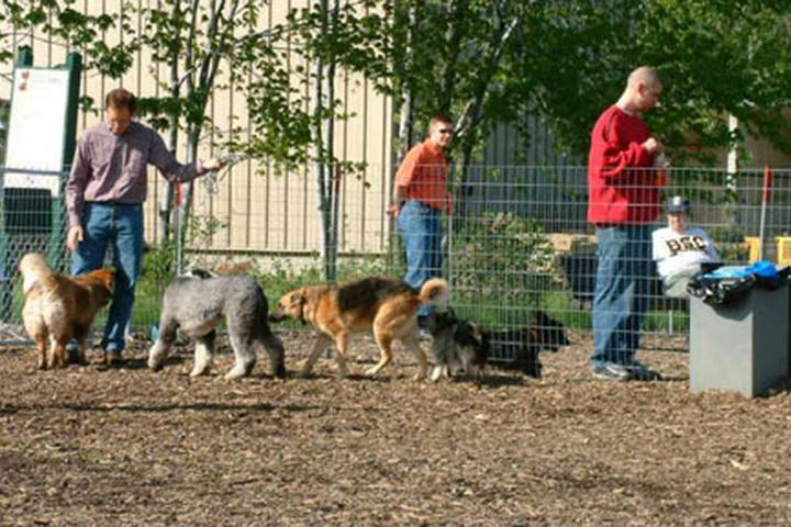 Pet Friendly Mentor Dog Park