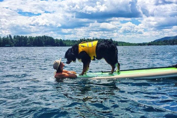 Pet Friendly Lake George Kayak Co.