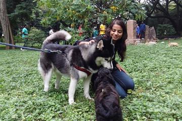 Pet Friendly Cubbon Park