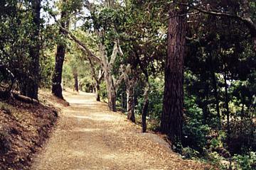 Pet Friendly Mission Trail Park