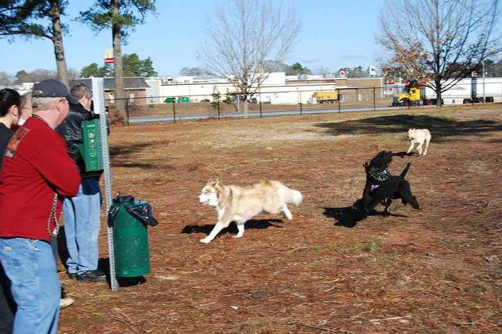 Pet Friendly Benson Dog Park