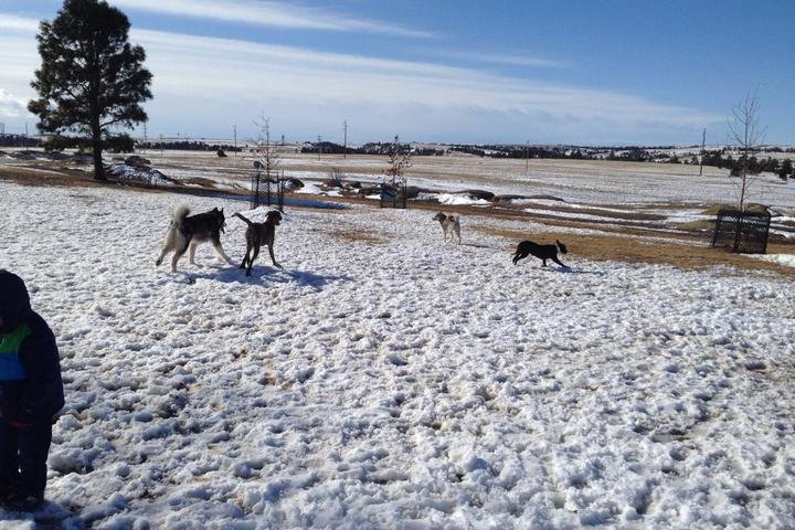 Pet Friendly High Sierra Dog Park