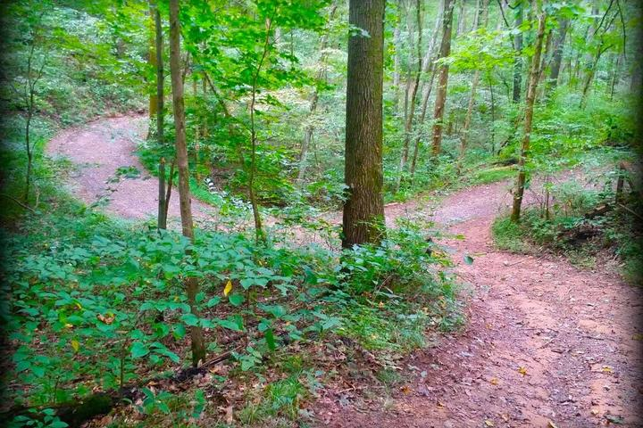 Pet Friendly The Trails at Fontanel