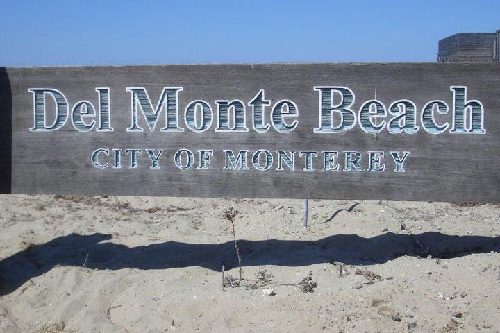 Pet Friendly Del Monte Beach