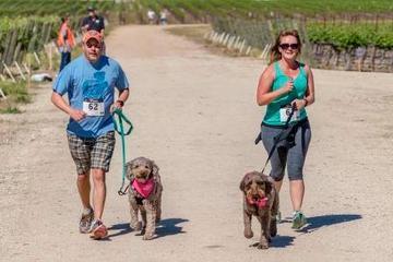 Pet Friendly Sherwood Dog Park