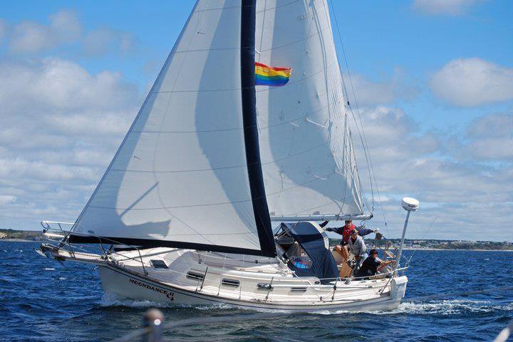 Pet Friendly Dog Gone Sailing Charters