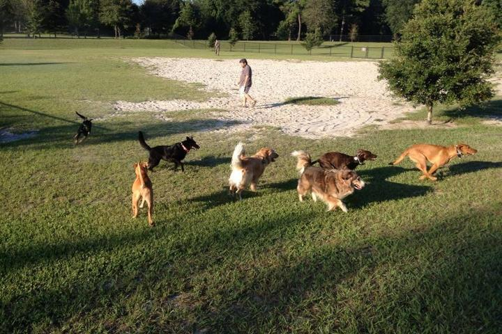 Pet Friendly Possum Creek Dog Park