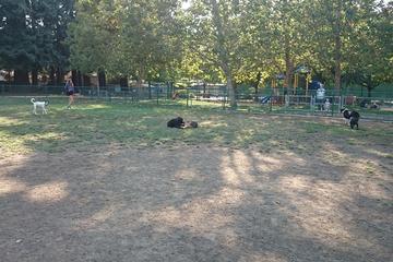 Pet Friendly Willow Oaks Dog Park