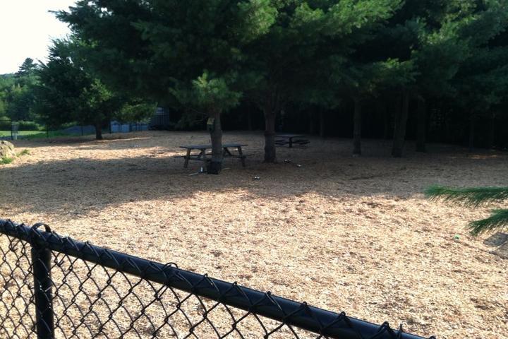 Pet Friendly Franklin Dog Park