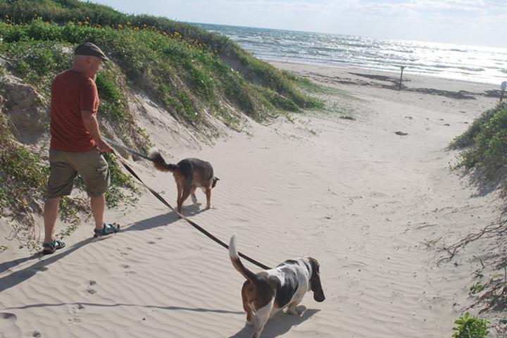 Pet Friendly Padre Island National Seashore