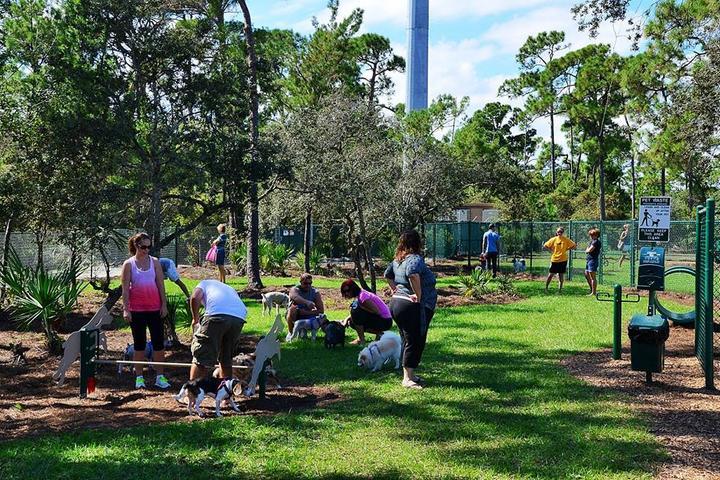 Pet Friendly Lyngate Park and Dog Park