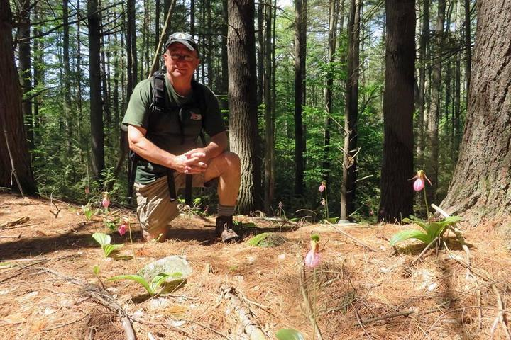 Pet Friendly American Legion State Forest