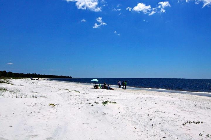 Pet Friendly Carrabbelle Beach