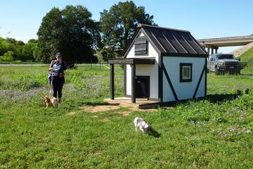 Pet Friendly New Braunfels Dog Park
