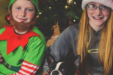 Pet Friendly Connie Winters' Pet Resort  Dog Adventure Park